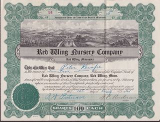 Rare 1921 Red Wing Nursery Company Stock Certificate. . . . . . .  5 Shares. photo