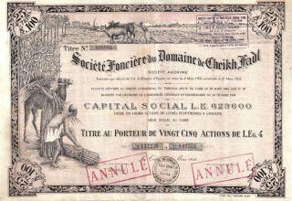 Egypt Bond 1938 Societe Fonciere Domaine Cheikh Fadl 25 Shares Top Deco photo