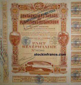 Compagnie Des Tabacs Et Des Plantations Du Cameroun photo