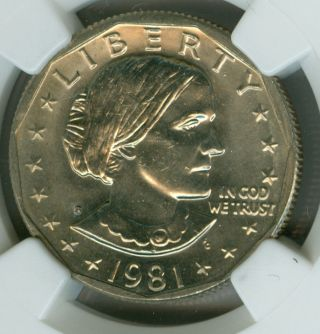 1981 - S Narrow Rim Sba Dollar Ngc Ms65 Pq Spotless. photo