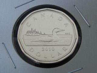 2010 Ms Unc Canadian Canada Loon Loonie One $1 Dollar Low Mintage photo