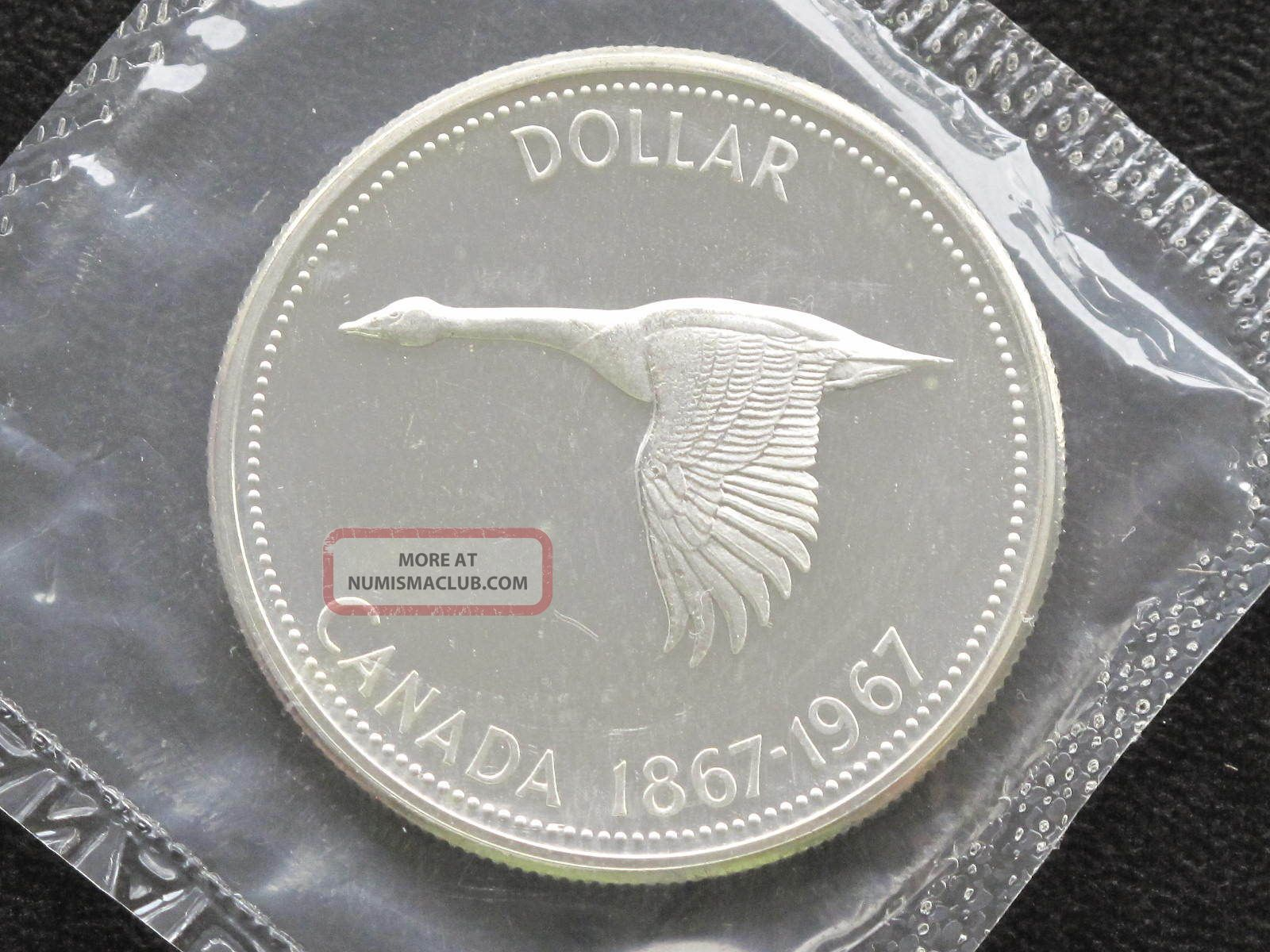 1967 Canada Dollar Elizabeth Ii 80% Silver Proof - Like Coin D0617 Coins: Canada photo