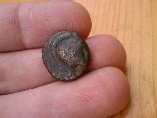 Athena Bull Bz Diameter 18mm Weight 7.  5g 6241 photo
