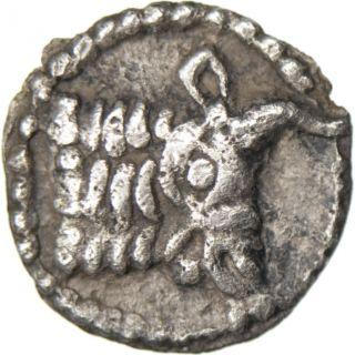 [ 32694] Macédoine,  Acanthe,  Hémiobole photo