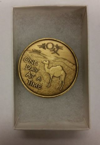 Camel In The Desert One Day At A Time A.  A.  Bronze Medallion Great Condtion photo