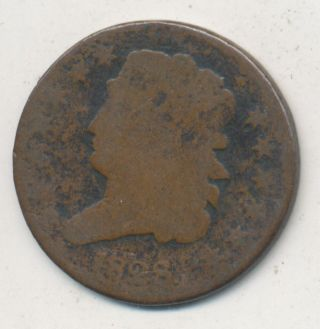 1828 Classic Head Half Cent 13 Stars Circulated Copper Type Coin photo