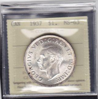 1937 Canada George Vi Silver Dollar Rare In Iccs Ms - 63 Double  Hp photo