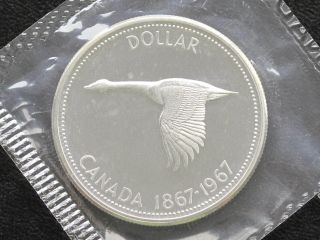 1967 Canada Dollar Elizabeth Ii 80% Silver Proof - Like Coin D0615 photo