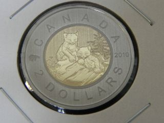2010 Specimen Unc Canadian Canada Lynx Kittens Toonie Two $2 Dollar photo