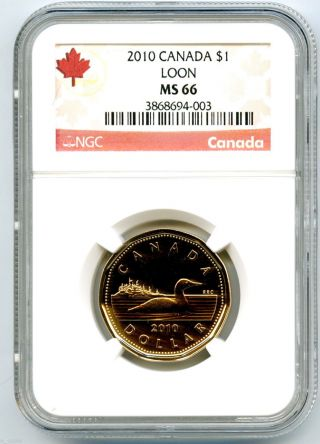 2010 Canada Loon Loonie Ngc Ms66 Proof Like Business Strike photo