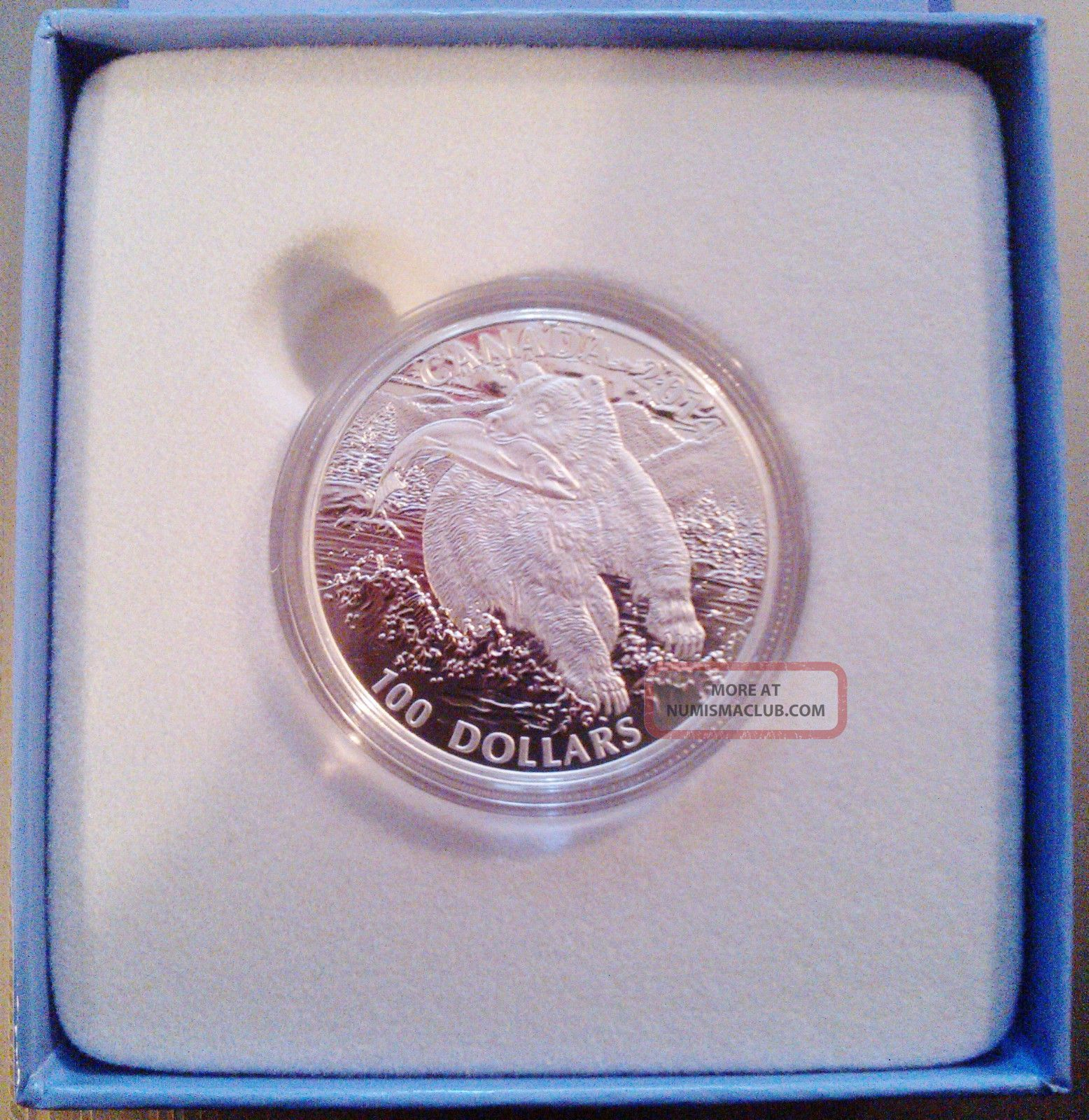 1 Oz Fine Silver One Dollar 1999
