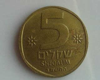 Israel Coin 5 Five Shekel Collect Money Unusual Rare Old Jewish Money 1981 Cash photo