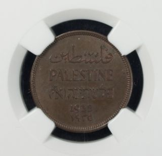 Palestine 1 Mil 1935 Ngc Ms 63 Bn Unc Bronze Sharp Looking Coin photo