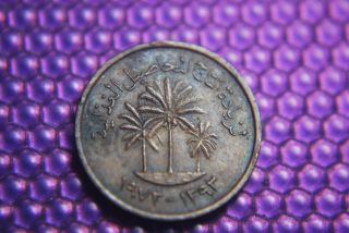 United Arab Emirates Small 1973 Oil Embargo Era Coin/ Us Ship/$1.  00 Int photo