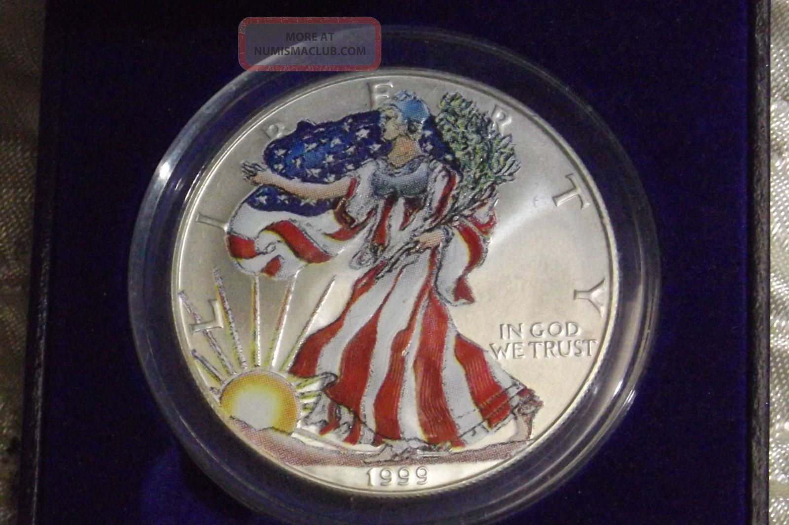 Painted 1999 U S Silver Eagle Coin 1oz 999 Silver W