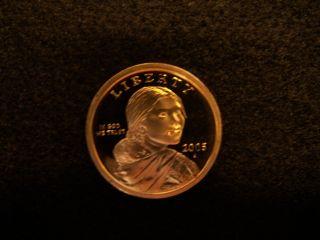 2005 S Native American Sacagawea Dollar Gem Deep Cameo Proof Us Coin photo
