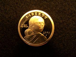 2006 S Native American Sacagawea Dollar Gem Deep Cameo Proof Us Coin photo