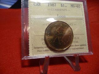 1987 (1$) Elizabeth Ii Portrait Iccs Ms - 65 (xoa 281) photo