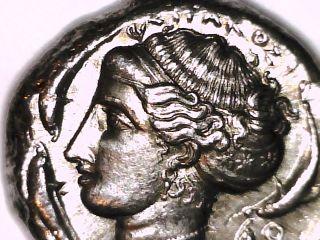 2rooks Greek Colonies Of Italy Sicily Syracuse Tetradrachm Chariot Dolphin Coin photo