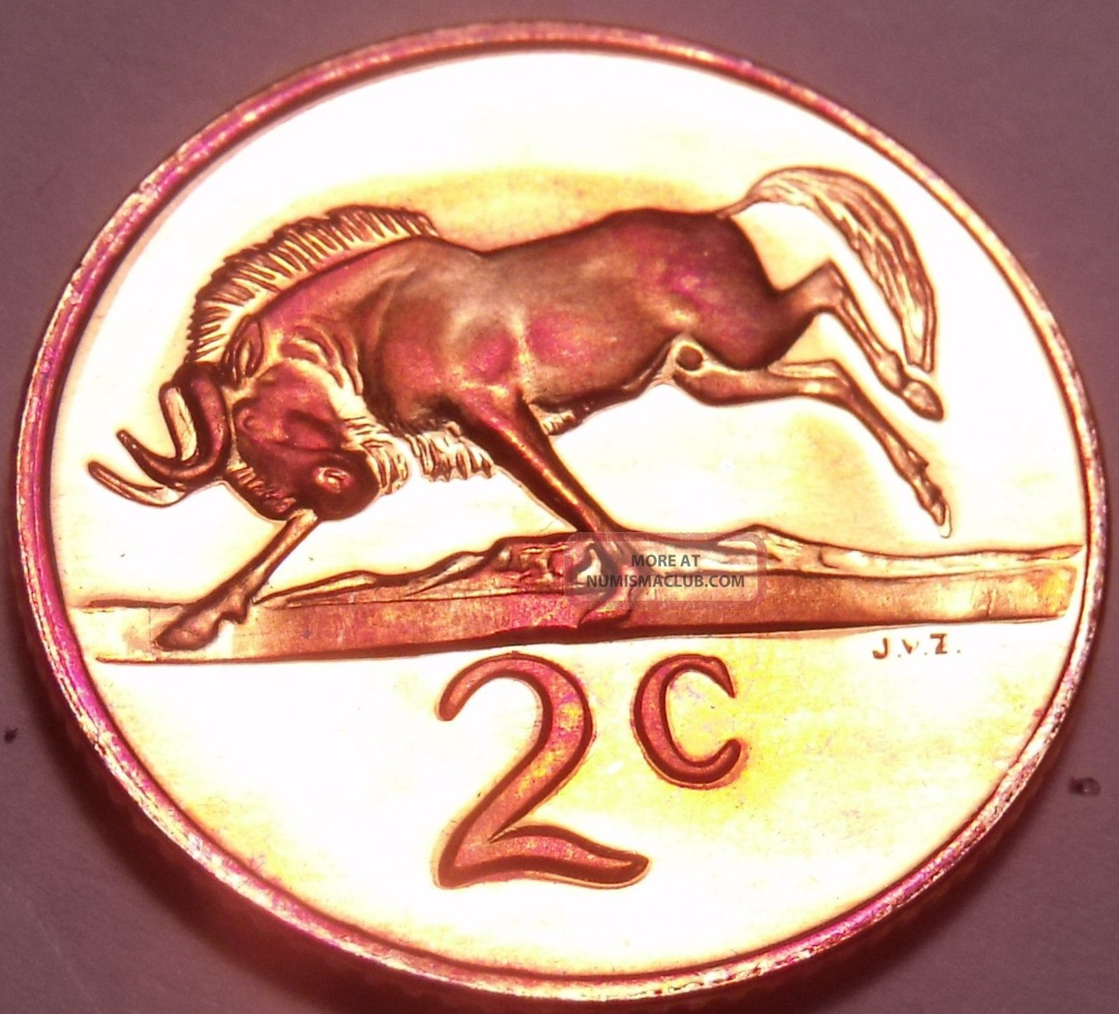 Rare Proof South Africa 1980 2 Cents Only 5,  000 Ever Minted Black Wildebeest F/s Coins: World photo