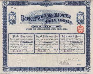 Argentina Capillitas Mines Ltd Stock Certificate 1909 1sh photo