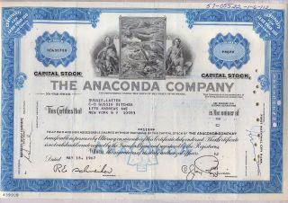 Anaconda Copper Mining Company Stock Certificate photo