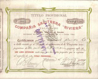 Chile 1910 Nitrate Company Compania Salitrera Riviera 1449 Shares photo