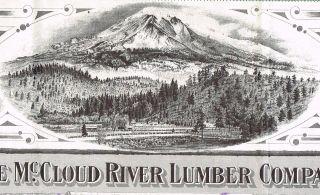 Usa Mccloud River Lumber Company Stock Certificate Minnesota photo
