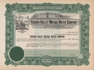 1913 Yucaipa Valley Water Co Stock Certificate California photo