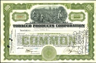 1928 Tobacco Products Corp Stock Certificate 100 Shares Common Antique Document photo