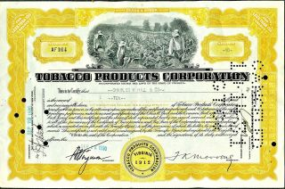 1930 Tobacco Products Corp Stock Certificate 10 Shares Class A Antique Document photo