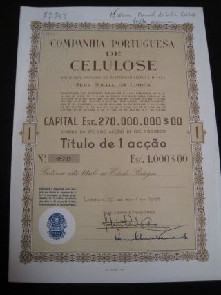 Portuguese Company Of Cellulose - One Share Certified 1965 photo