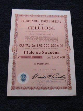 Portuguese Company Cellulose - Five Share Certified 1965 photo