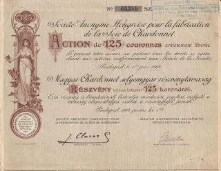 Hungary Chardonnet Silk Co Stock Certificate 1904 photo