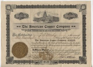 1906 The American Copper Compnay Wyoming Stock Certificate 100 Shares photo