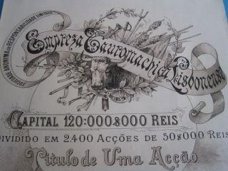Company Bullfighting Lisbon - One Share Certified photo