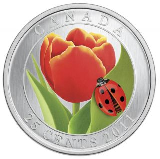 2011 Canada 25 Cent Coin Tulip With Lady Bug photo