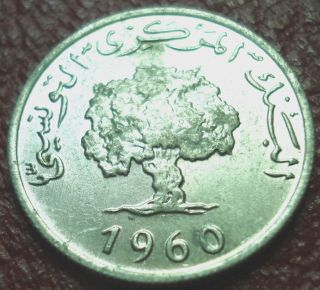 1960 Tunisia 2 Millim In Au photo