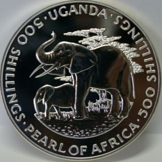 Uganda 1981 500 Shillings,  African Elephants & Dr.  Milton Obote,  Oversize Coin photo