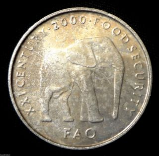 Somalia,  2000 5 Shillings Fao Elephant Walking Light Patina photo