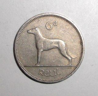 1964 Ireland 6 Pence,  Irish Wolfhound Dog,  Animal Wildlife Coin photo