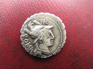 Roman Republic Ar Denarius C.  Poblicius Q.  F.  80 Bc Hercules And Lion photo