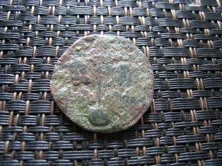Constantine Vii & Leo 913 - 959 Ad Ae Follis Constantinople Ancient Byzantine Coin photo