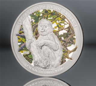 Central African Republic 2013 1000 Francs Piliocolobus Foai Proof Silver Coin photo