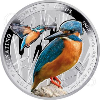 Niue 2014 1$ Kingfisher The Fascinating World Of Birds Proof Silver Coin photo