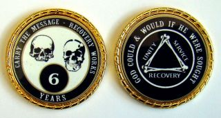 Alcoholics Anonymous 6 Year Skulls And Bones Rope Edge Sobriety Coin Chip 1 3/4