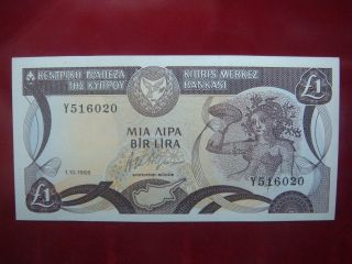 Cyprus 1988 - One Pound Banknote - Uncirculated 1/10/1988 100 Unc photo