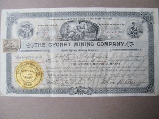 1900 The Cygnet Mining Company Inc.  Stock Certificate photo