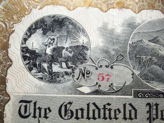 1905 Stock Certificate - The Goldfield Peerless Mining Co,  (nevada Mining) 500 photo