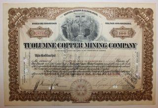 1918 Tuolumne Copper Mining Stock Certificate Territory Of Arizona Mult Revenues photo